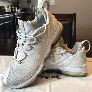 Nike Lebron 14 Lows